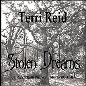 Stolen Dreams Audiobook