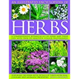 An Illustrated Encyclopedia of Herbs: A comprehensive A-Z of herbs and their uses with 700 color photographsby Jessica Houdret