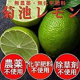 無農薬・無化学肥料 小笠原の島レモン 1kg ランキングお取り寄せ