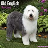 Avonside Publishing Old English Sheepdog 2015 Wall Calendar (Square)