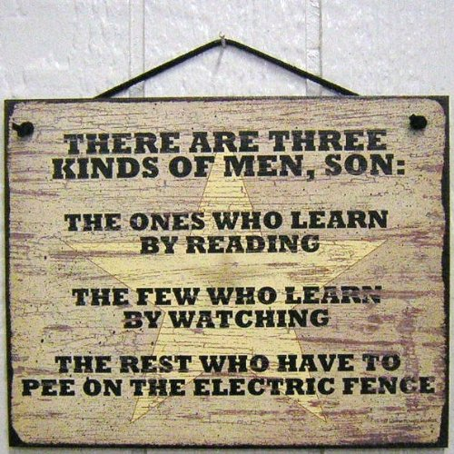 """Vintage Style Sign Saying, """"There Are Three Kinds Of Men, Son: The Ones Who Learn By Reading, The Few Who Learn By Observation And The Rest Who Have To Pee On The Electric Fence"""" Decorative Fun Universal Household Signs From Egbert'S Treasures"""