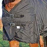 Turnout Weidedecke, Regendecke, Outdoor- Winterdecke für Pferde, 300g, Größe 155 wasserdicht besser als wasserfest oder wasserabweisend! -