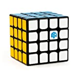 RONSHIN 4x4 Professional Magnetism Speed Cube Intellectual Development Brain Teaser Puzzle Toy for Adult or Kids Black (Color: Black)