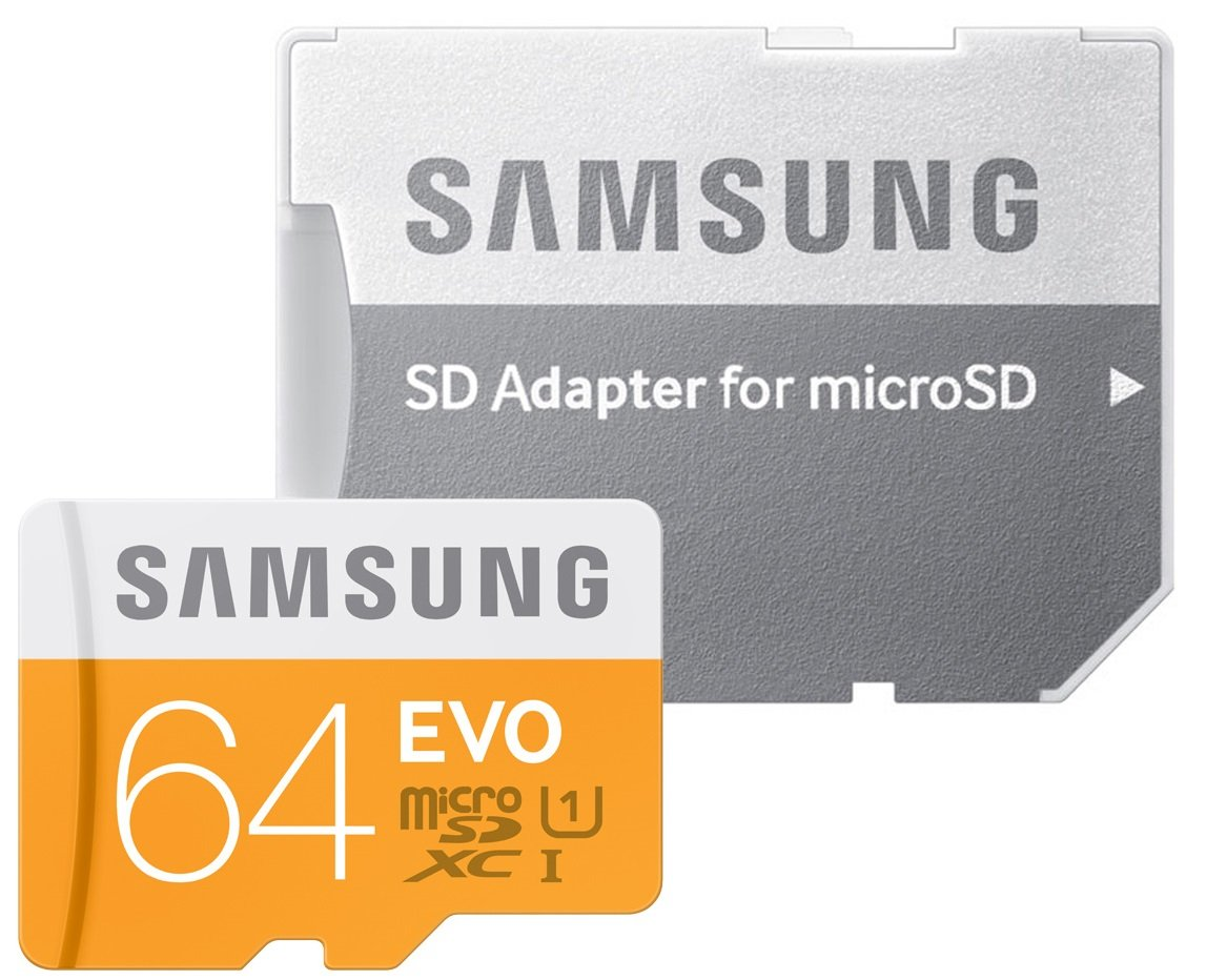 Samsung Evo 64GB SDXC Card