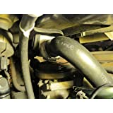 Radiator Coolant Hose-Molded Coolant Hose Lower Gates 21946