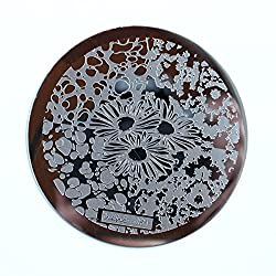 Hehe nail art stamping plate 81.