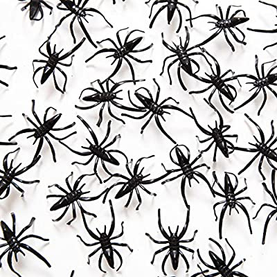 """1 1/2"""" Plastic Spiders, 72 Pack from Century Novelty"""