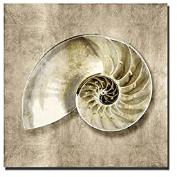 Golden Sea Life IV by Caroline Kelly Custom Gallery-Wrapped Canvas Giclee Art (Ready to Hang)
