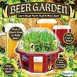 The Best Dunecraft Beer Garden Dome Terrarium