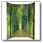 Path of Life Nature Photography Room Divider Screen