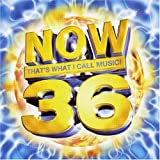 Various Artists Now That's What I Call Music 36 (South Africa Series)
