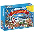 Playmobil 4166 Advent Calendar Forest Winter Wonderland