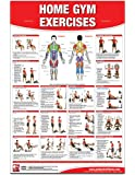 Home Gym Exercises Laminated (Poster)