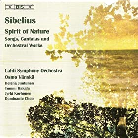 Sibelius - Guide discographique de la musique vocale 61loX05HXFL._SL500_AA280_