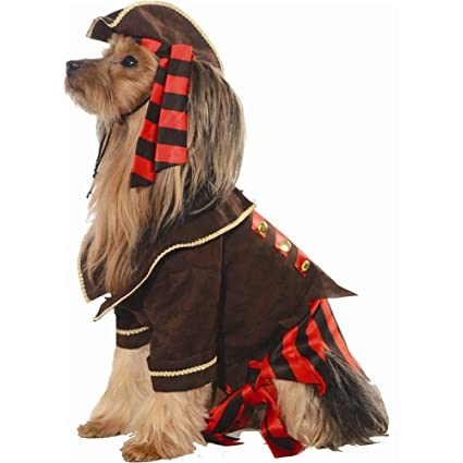 pirate costume for the dog