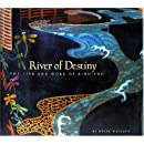 River of Destiny:  The Life and Work of Binh Pho