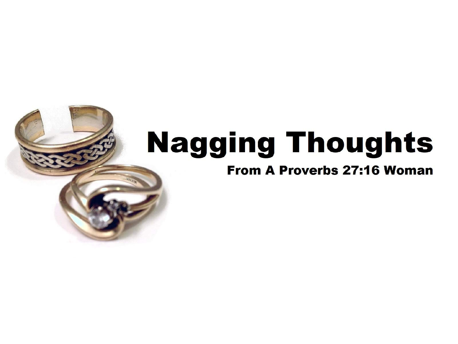Nagging Thoughts From A Proverbs 27:16 Woman - Season 1