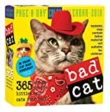 Bad Cat Page-A-Day Calendar 2010