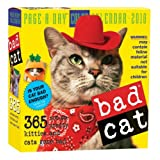 Bad Cat Page-A-Day Calendar 2010 ~ Workman Publishing
