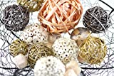 "Natural and Neutral Vase Filler Sphere Balls 2-3"" (Cantaloupe)"