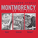 Montmorency on the Rocks | Eleanor Updale