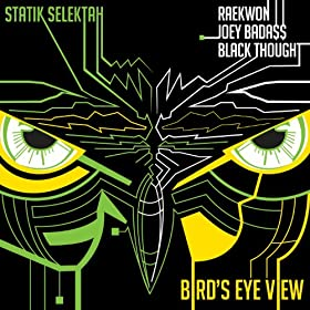 Bird's Eye View (feat. Raekwon, Joey Bada$$ & Black Thought) [Explicit]