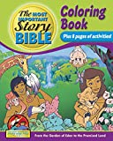 img - for Coloring And Activity Book Vol 1 - English: From The Garden of Eden To The Promised Land book / textbook / text book