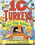 img - for 10 Turkeys in the Road book / textbook / text book