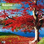 Bume 2013