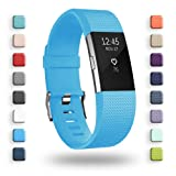 POY Replacement Bands Compatible for Fitbit Charge 2, Classic & Special Edition Sport Wristbands, Cerulean Large, 1PC