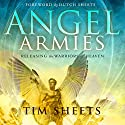 Angel Armies: Releasing the Warriors of Heaven Audiobook by Tim Sheets Narrated by Winston Douglas