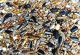 Premium Bird Seed UK - 25KG Complete Wild Bird Seed Mix for Garden Bird Tables and Feeders - 25Kg