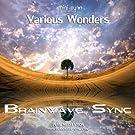 Various Wonders - Meditation Music for Relaxation, Sleep, Dreams & Visualization (Brainwave Entrainment)