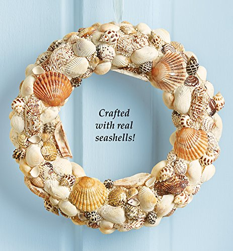 Real Seashells Beach Nautical Coastal All Hanging Door Wreath Decor Decoration