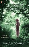 The World My Wilderness (Virago Modern Classics)