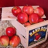 Gala Apple Crate