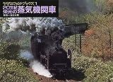 20世紀栄光の蒸気機関車 (ヤマケイレイルブックス)