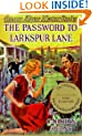 The Password to Larkspur Lane (Nancy Drew, Book 10)