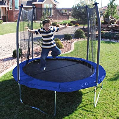 Skywalker Trampolines 8 Ft Round Trampoline And Enclosoure With Blue Spring Pad from Skywalker