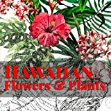 img - for Hawaiian Flowers & Plants: Relaxing Coloring Therapy for Adults (Island Color) (Volume 1) book / textbook / text book