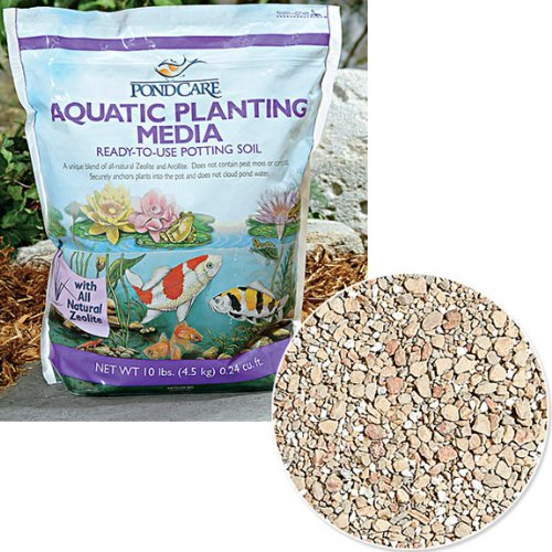 Aquatic Plant Soil