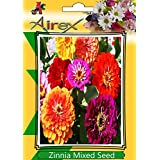 Airex Zinnia Mixed Flower Plant Seeds ( Pack Of 30 Seeds Per Packet)
