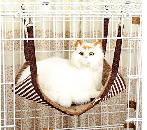 Big lots cat cages