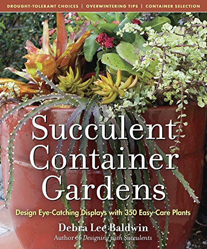 Download Succulent Container Gardens: Design Eye-Catching Displays with 350 Easy-Care Plants