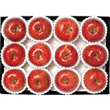 長野県産 極蜜 りんご サンふじ 特選品 14-18個 5kg