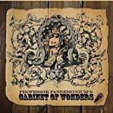 Douglas Laferle - Professor Pandemonium