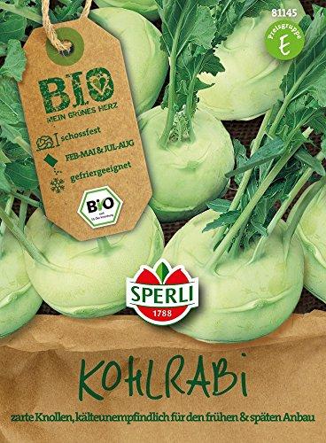 Gemüsesamen - Bio-Kohlrabi, weiß Lanro - Bio-Saatgut von Sperli-Samen