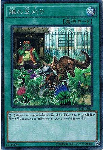隣の芝刈り シークレットレア 遊戯王 レイジング・テンペスト rate-jp066