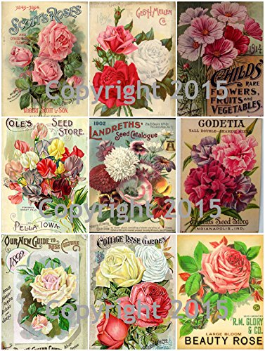 victorian-vintage-seed-pack-flowers-collage-sheet-101
