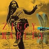 Dragonflyby Ziggy Marley